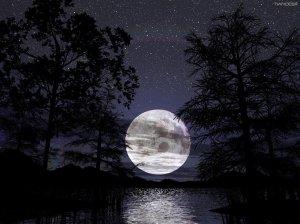 En plein coeur de la nuit