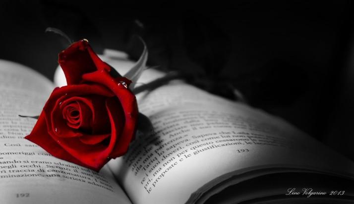 fleur de poète